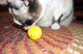 Homeade Catnip bolas