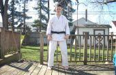Posiciones básicas de karate