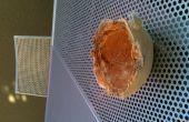 Cenicero de concha de coco