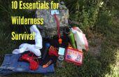 10 esenciales para la supervivencia del desierto