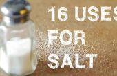 16 usos inusuales para la sal