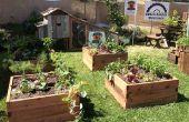 Introducción a la jardinería con camas