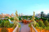 Nueva York paisaje diseño cómo hacerlo: Jardín de terraza en la azotea