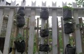 Jardín vertical en 10 minutos!