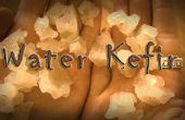 Cómo hacer auténtico Kefir de agua