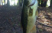 Guía para pesca de agua dulce