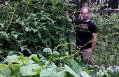 Enrejado de jardinería vertical para tomates o squash