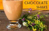 Fácil rico batido de chocolate (productos lácteos!)