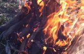 Un éxito el fuego