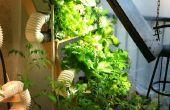 Granja hidropónica Vertical final baratos... Cultivos verdes lejos de regalo!