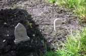 Veg parche cementerio