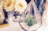 Terrario DIY suculenta por suscripción Luxe hecho hogar caja