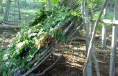 Cómo crear un cobertizo refugio en el bosque de hojas caducas
