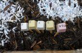 Marcadores de la planta de jardín Pinckneyville teclado