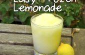 Fácil helado limonada