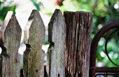 Salvar su valla de madera de moho
