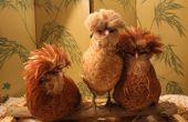 Los piojos de las aves de corral - ¿qué, por qué, quién, Cuándo y dónde? Tratamiento con aceites, prevención con dieta. Los pollos orgánicos