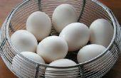 Cómo crear una tortilla de clara de huevo