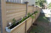Pequeño espacio living jardín de hierbas/verduras