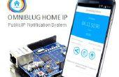 Saber la IP publica desde tu casa