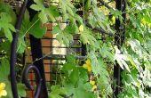 Reutilizar utilizado vallas como jardín enrejado
