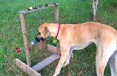 La vuelta fuera de juego - horas de diversión para perros, mapaches y otros animales!