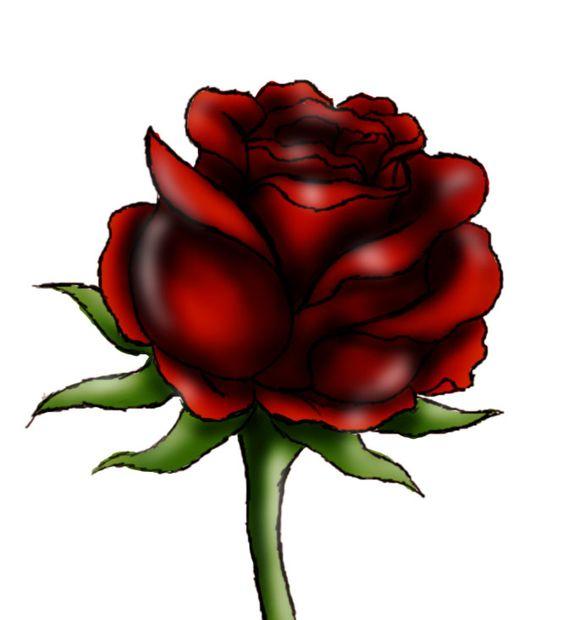 Cómo Dibujar Una Rosa Roja Askixcom