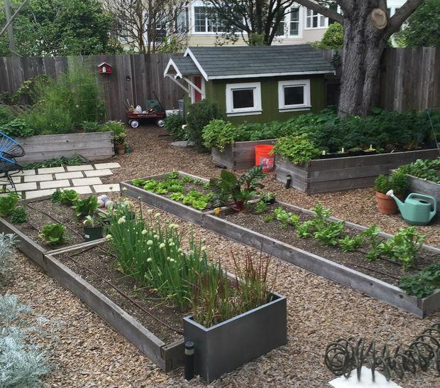 Agricultura urbana: Levantado jardinería cama - askix.com
