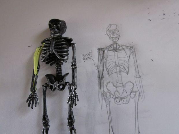 Aprender anatomía muscular con un esqueleto de Halloween / Paso 4 ...